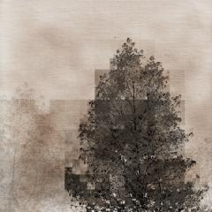 Tree, Squared