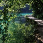 A Sheltered Path, Plitvice Lakes, Croatia