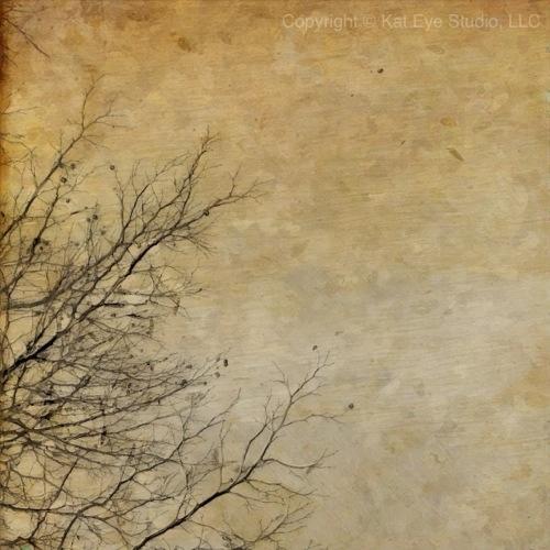 20121205-055621.jpg