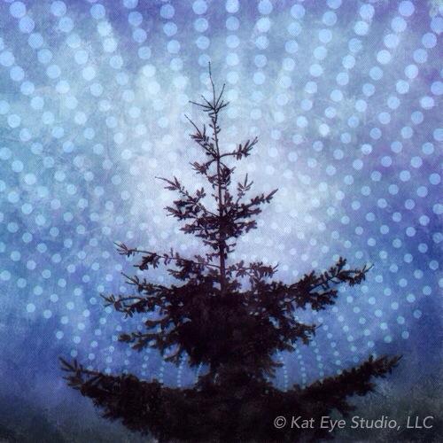 Kat Sloma Photography Tree