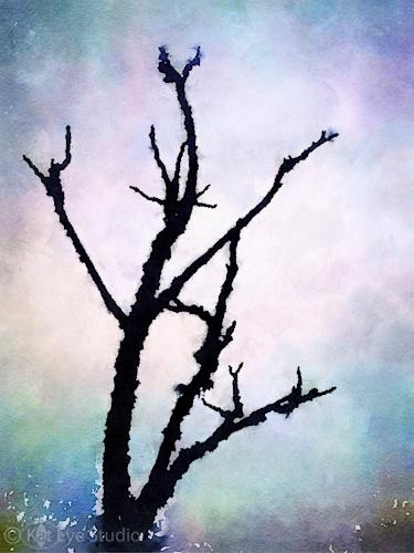 Kat Sloma Tree Photograph