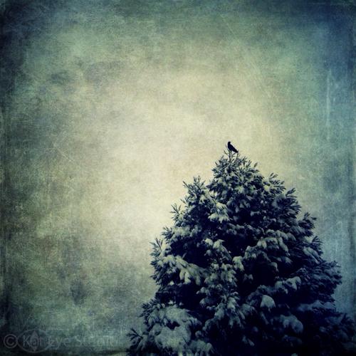 Kat-Sloma-Photography-1392