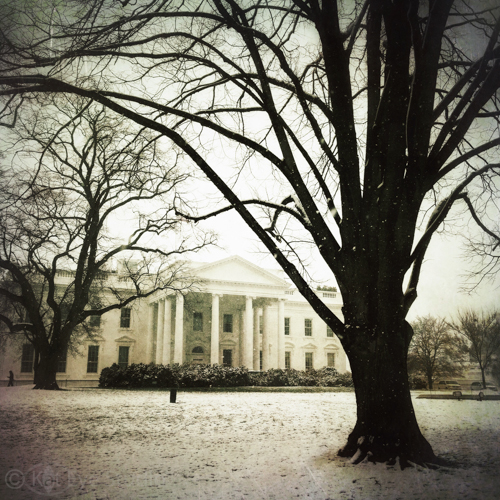 White House Washington DC Kat Sloma Photography