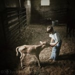 Amish Farm Boy Holmes County Ohio Kat Sloma Photography
