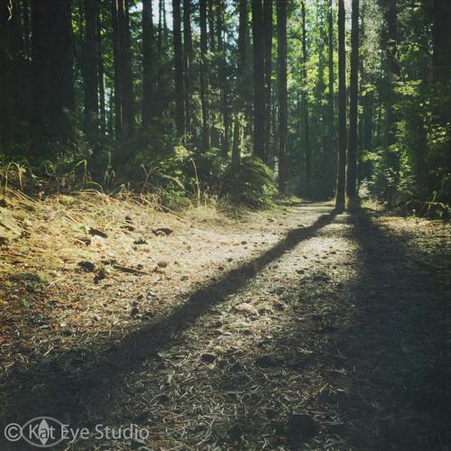 Kat-Sloma-Photography-3194
