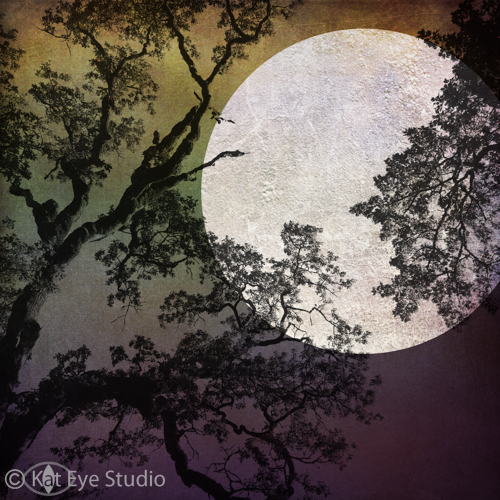Harvest Full Moon Summer Oak Corvallis Oregon Kat Sloma Mobile iPhone Photography