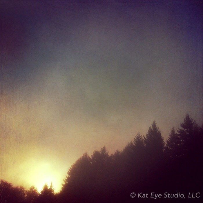 Morning Forest Silhouette Oregon Kat Sloma iPhone Photography