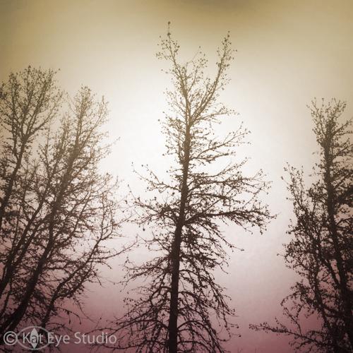 Kat-Sloma-Photography-4480