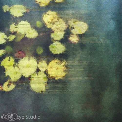 Pond Lily Pad Green Painting Photography Kat Sloma iPhone Photography Singapore
