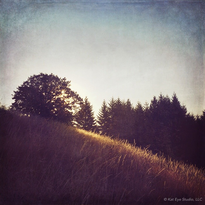 Bald Hill Corvallis Oregon Morning Kat Sloma iPhone Photography