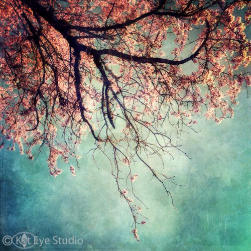 Kat-Sloma-Photography-4666