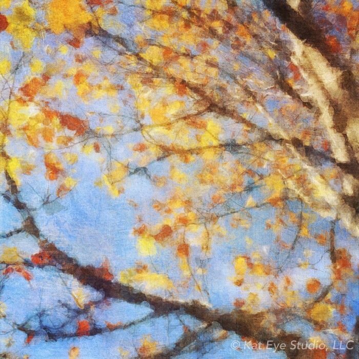 Autumn Tree Happy Sky Kat Sloma iPhone Photography