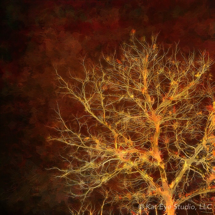 Winter Tree Orange Brown Kat Sloma iPhone Photography  #30edits