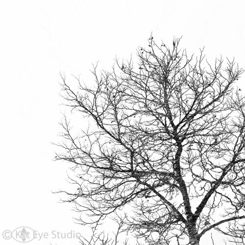 Kat-Sloma-Photography-6850